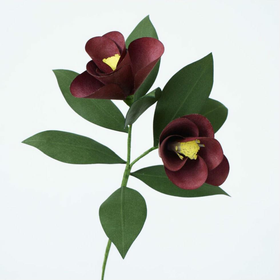 サムネイル:PAPER EDEN  with naoron Camellia WINE RED ツバキ ワインレッド